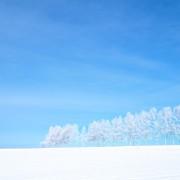藤田一照HP写真2月