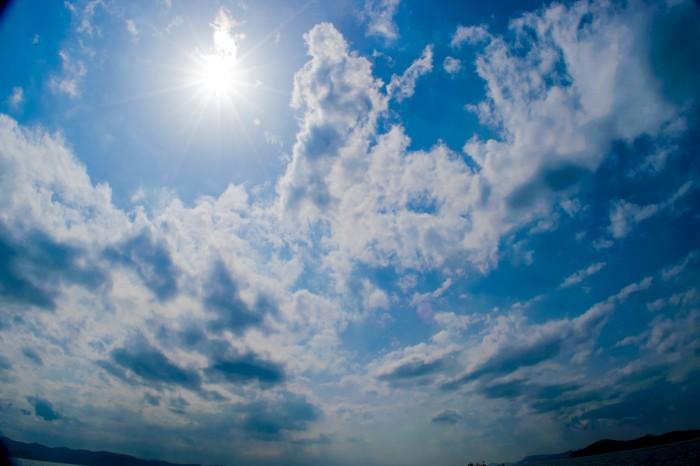 藤田一照HP8月写真